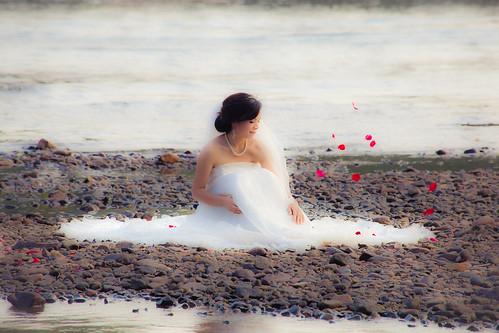 Bridal rose shower
