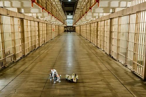 Biorobots Escape | by swissnex San Francisco