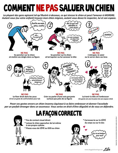 HOW NOT TO GREET A DOG - French Version | by lili.chin
