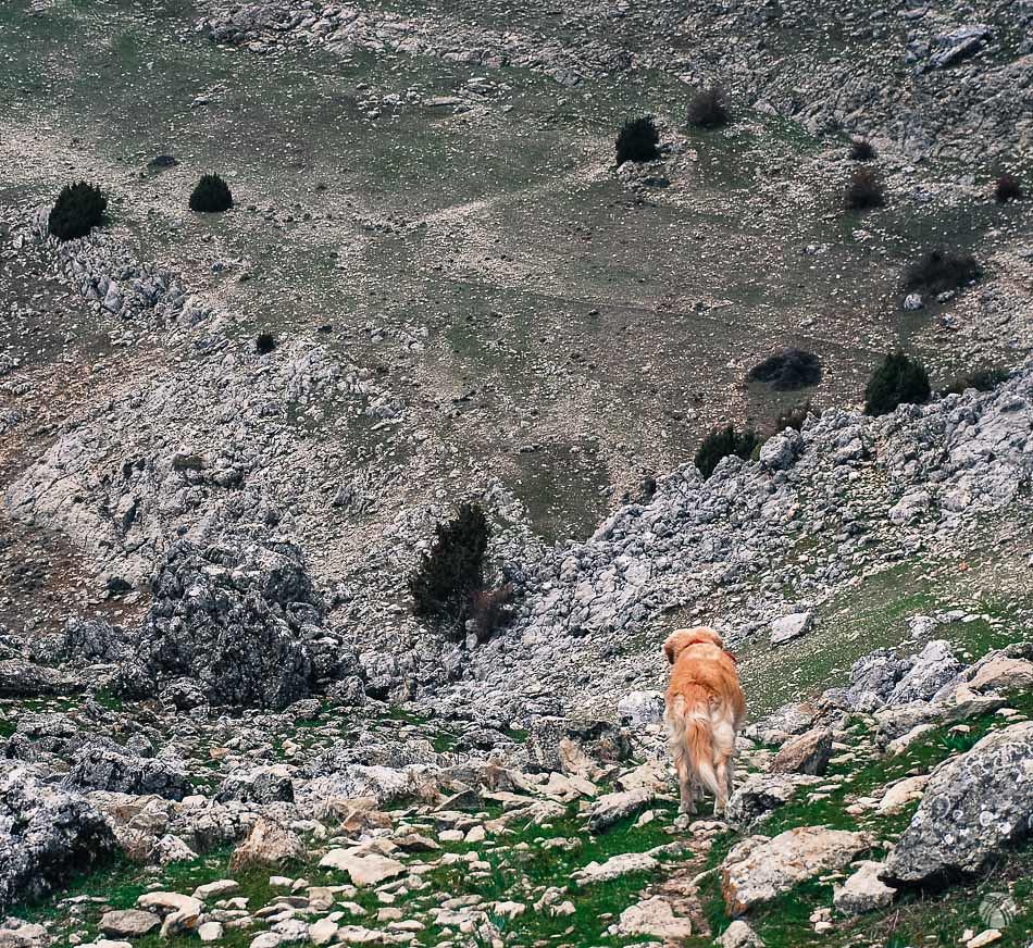 Siguiendo una vereda muy poco definida que se aprecia en la ladera de enfrente.
