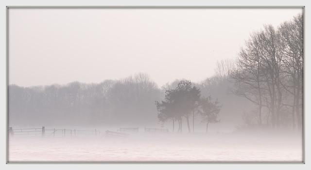 still in a misty mood