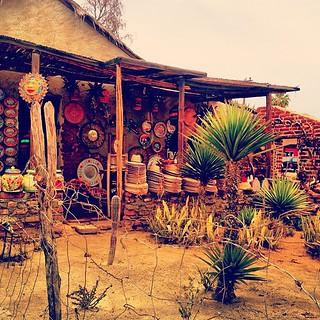artist's backyard in mexico | by sarahwulfeck