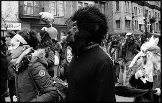 Guerrilla in the midst | by scottmontreal