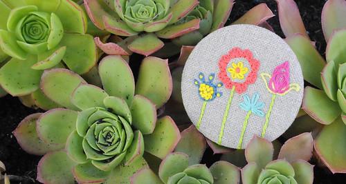 bloom | by herbariodocolibri