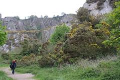 Dalkey Quarry