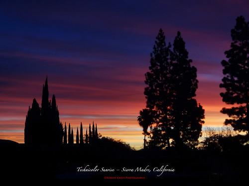 california trees silhouette pine clouds sunrise landscape dawn la losangeles rainbow arboles spectrum alba amanecer palmtrees aurora nubes cypress pasadena aurore sierramadre aube alborada sgv salidadelsol pointdujour