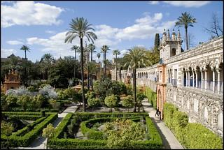 Jardines del Alcázar   by Leticia Ayuso