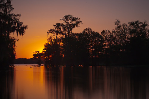 trees sunset sky lake tree nature water sunrise scott landscape island photography dawn photo louisiana martin photos dusk wildlife bayou swamp theme cypress etsy waterscape mohrman