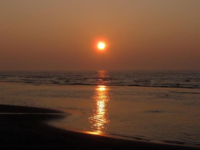 La maro