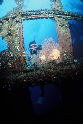 Vanuatu diving   by Traveloscopy
