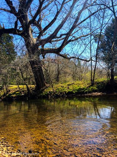 water creek madison iphone madisonalabama iphonephotography iphone5s