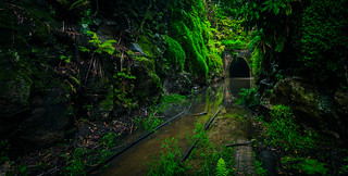 Abandoned train tunnel | by Simpson Tien