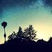 backyard view. copy