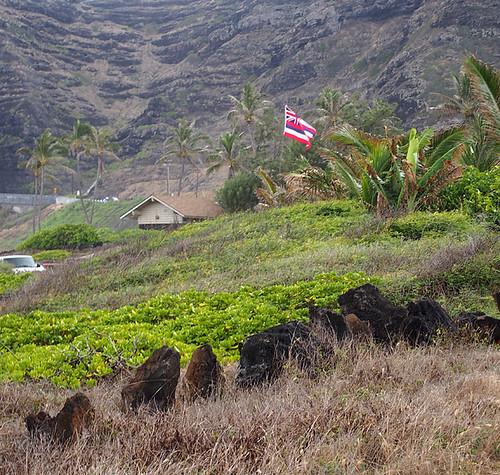 Blue Hawaii Photo Tour -Joe 06 | by KathyCat102