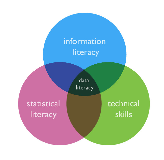 What is data literacy? (1/6)