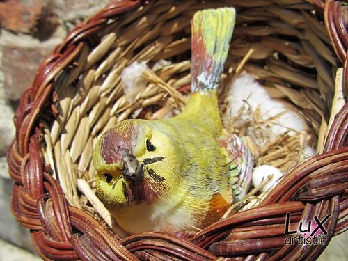An unusual bird | by artistic LuX ☼
