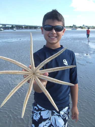 Max finds a 9 armed starfish!