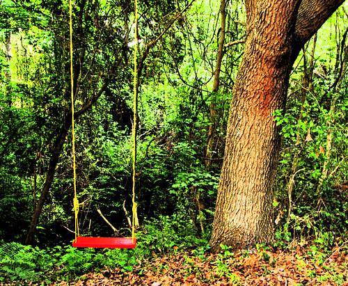 swing redswing myplacebrooksvilleflorida