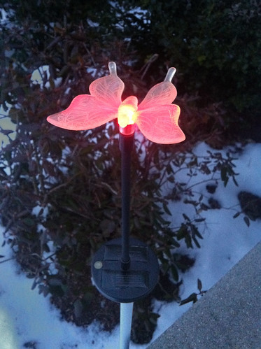 Fully-recharged solar light glowing brightly! | by kriegsman