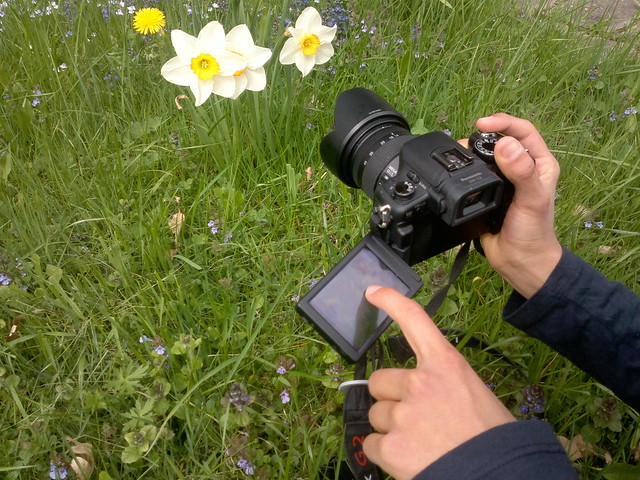 Low Angle Photography with Side-Hinging Touch-Screen Monitor