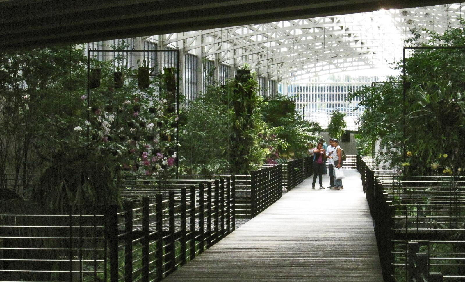 Parque Bicentenario 108