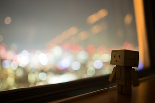 Danbo enjoying the view from Tokyo Tower | by Takashi(aes256)