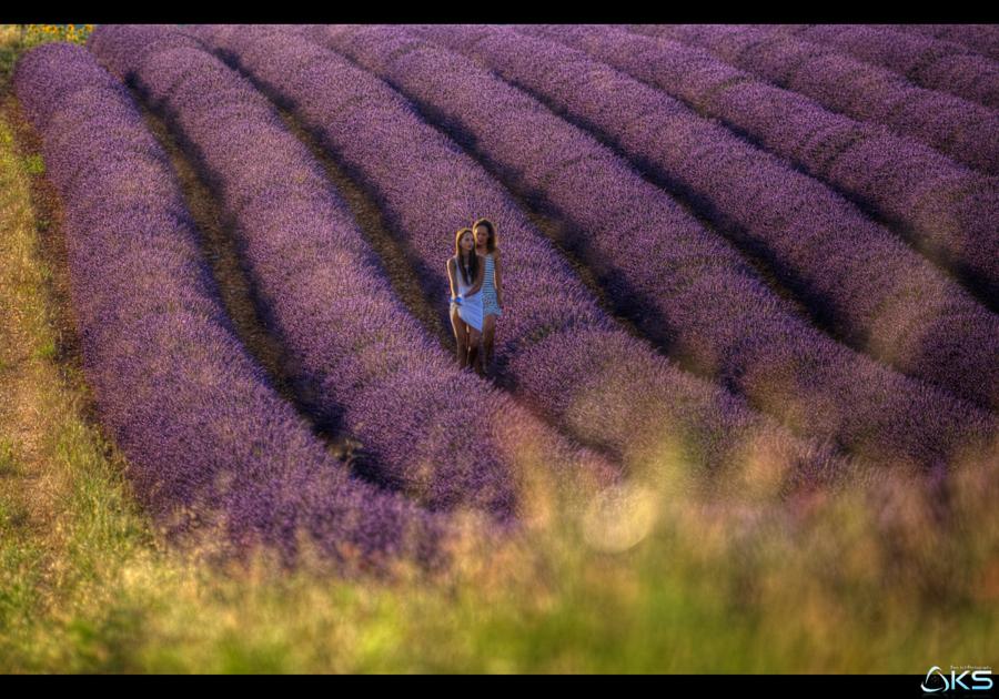 Girls in lavender