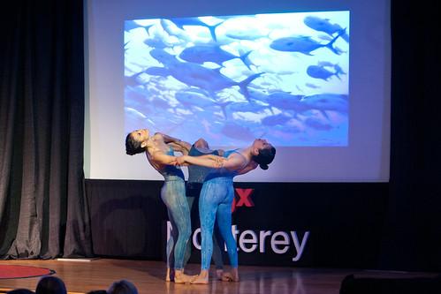 Spector Dance - school of fish | by TEDxMonterey