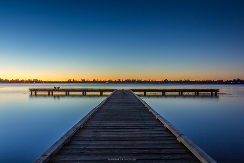 canon canoncollective canon60d canonaustralia canoneos sunset nature long exposure pier water wood blue hour birds orange