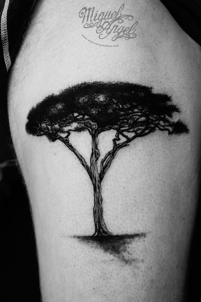 Acacia Tree Tattoo Miguel Angel Custom Tattoo Artist Www M Flickr