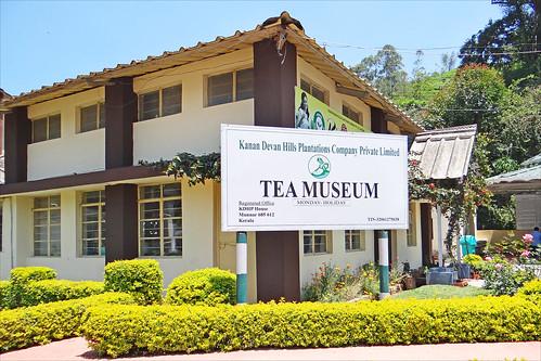 Le musée du thé (Munnar, Inde) | by dalbera