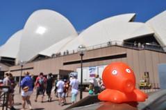 Pulpito @ Sydney (Austràlia)