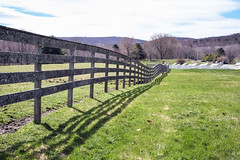 Baby Animals at Hancock Shaker Village - Pittsfield, MA - 2012, Apr - 05.jpg by sebastien.barre