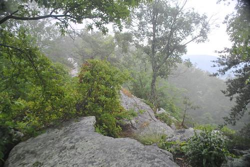 face georgia gap rocky ridge dalton battlefield dug