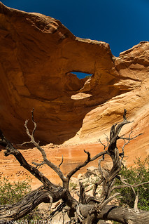 Overhang Arch | by IntrepidXJ