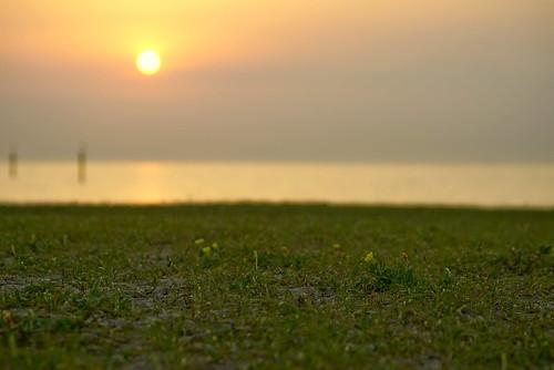 sunset sony contax variosonnar 2485 70300