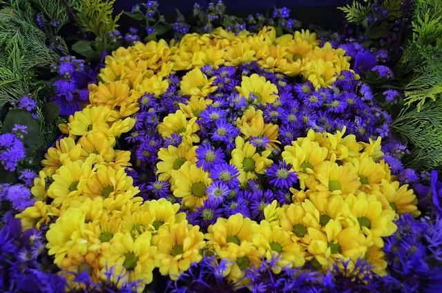 Flower festival_010