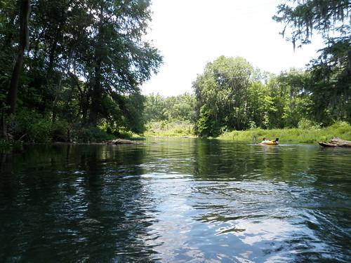 statepark river florida tubing fortwhite ichetuckneespringsstatepark