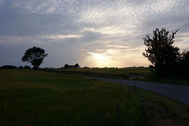 Kaedeby-Haver-2013-07-02 (5)