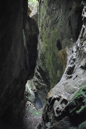 georgia gold mine hole glory consolidated dahlonega