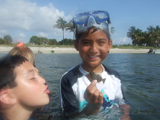 Christian finds a spotted filefish!