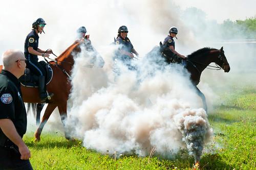 DMPD Mounted Patrol Training