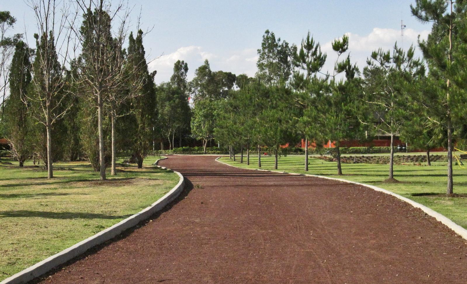 Parque Bicentenario 128