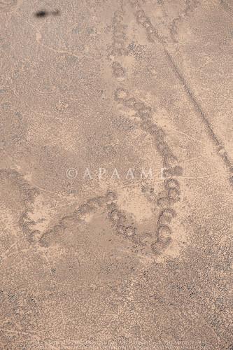 Ausaji Kite 21, Ausaji Chain Wall 2 | by APAAME