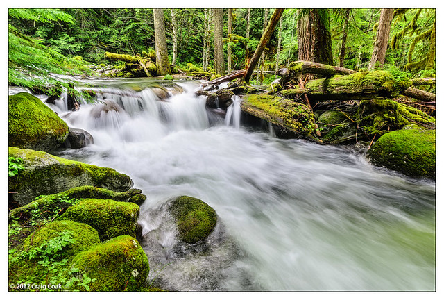 waterfall on unknown creek, near Stevens Pass (WA)