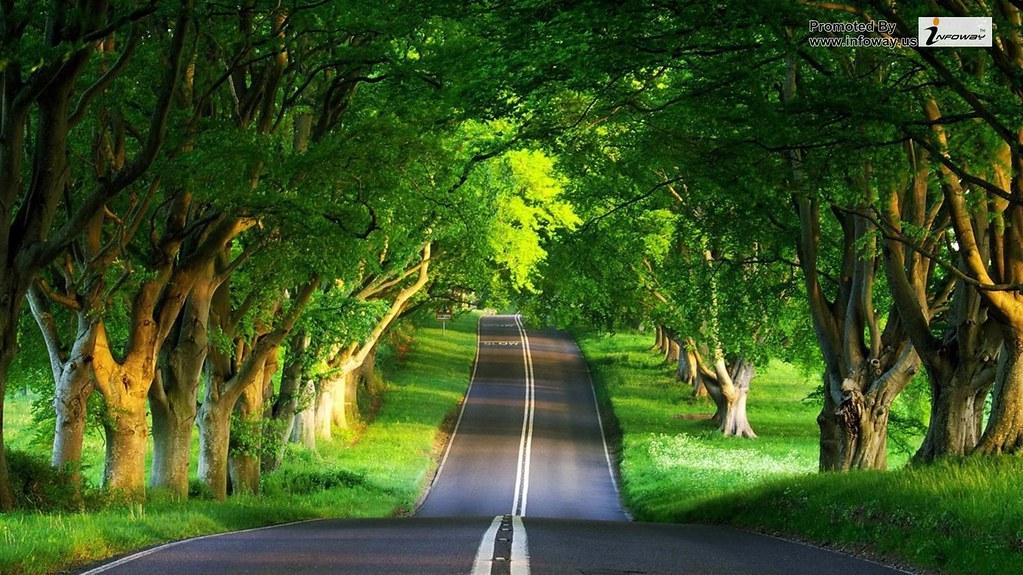 Road Summer Beautiful Natural Scenery Desktop Wallpapers