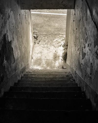 Untitled   by YELLOW Mao. 黃毛, Photographer