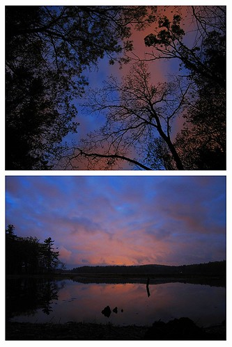 morning pink blue trees sky black water colors tangerine clouds contrast digital forest sunrise canon ma dawn spring woods exposure state dam horizon may violet powershot beaver ixus sd swamp mass treeline 130 bold elph lowell canonpowershot tyngsboro ldt dracut canoncamera sd1400 sd1400is ixus130 1400is