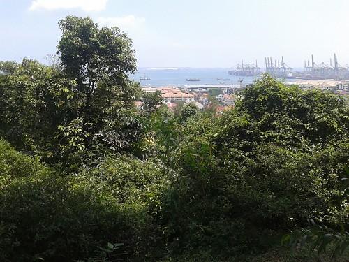 圖04從「肯特崗公園」眺不遠處的「巴西班讓」(Pasir Panjang)港