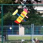 za, 09/06/2012 - 16:25 - Dakota-20120610-16-25-45-IMG_4882